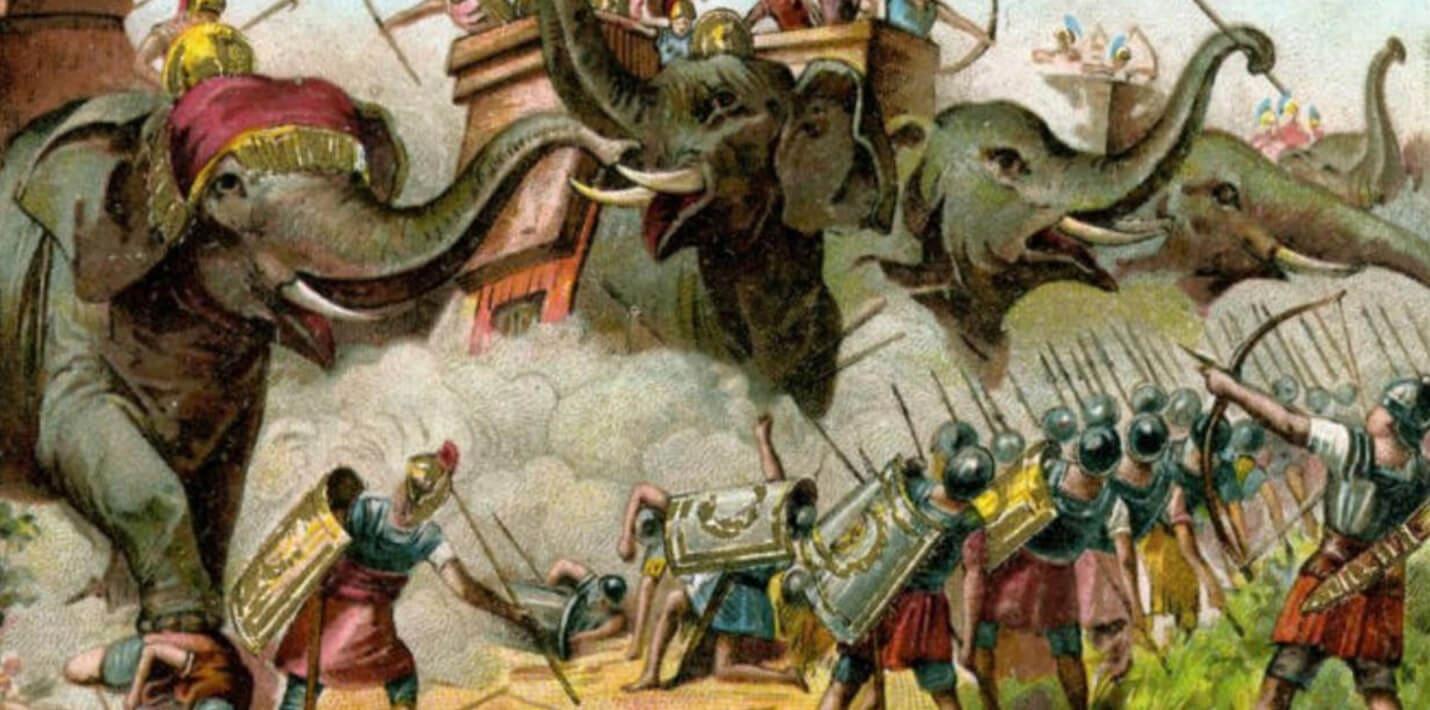 Коррида со слонами