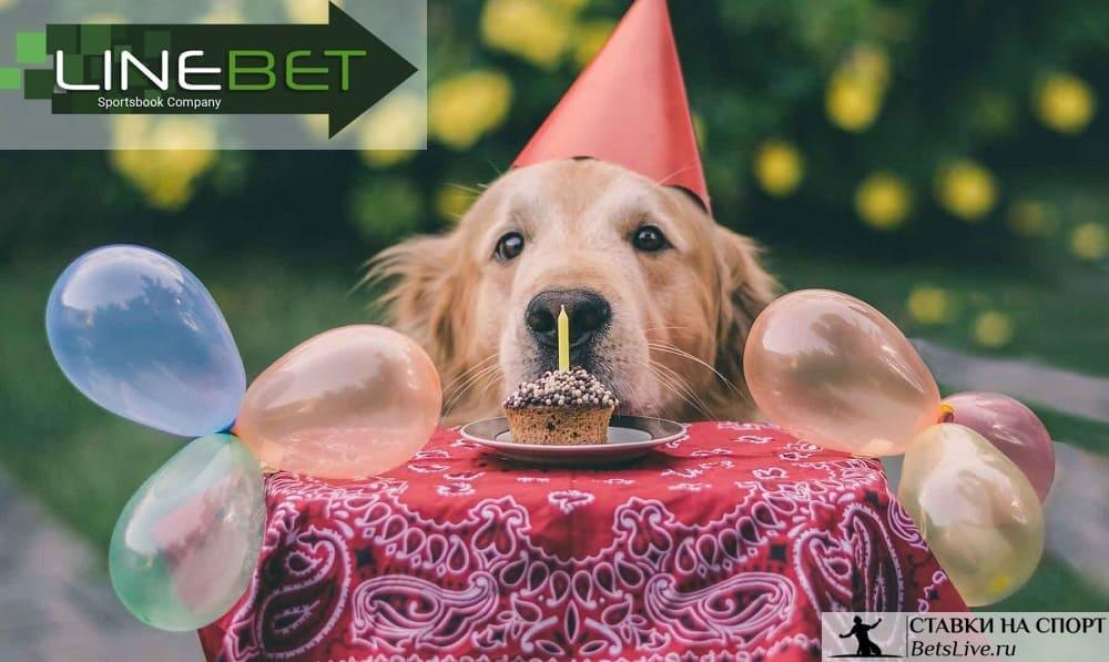 День рождения с Linebet