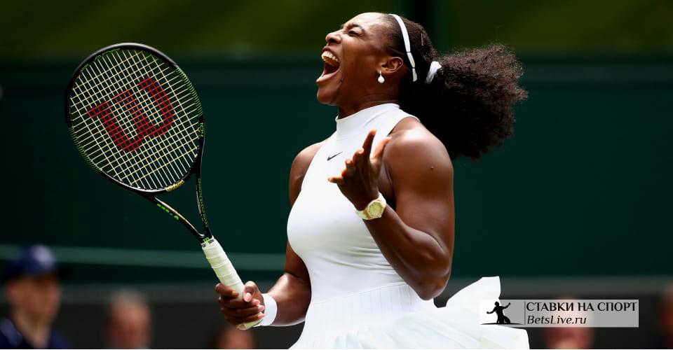 Как выиграть на ставках на теннис
