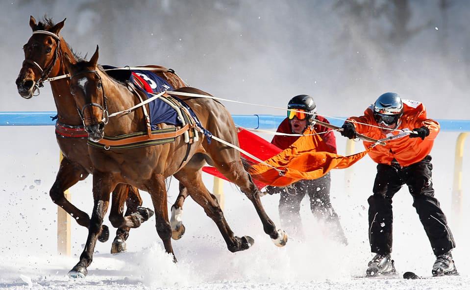 Самые необычные зимние виды спорта - Скиджоринг